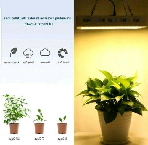 Roleadro LED Grow Light 2nd Plant Full