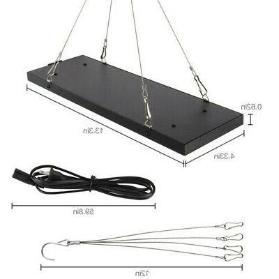 600W LED Light with Monitor Lamp