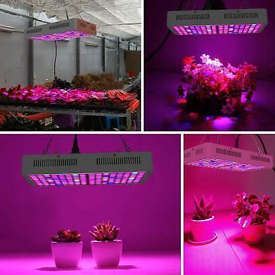 Lightimetunnel 800w Light Full Spectrum Plant Lamp ...