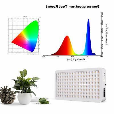 Lightimetunnel LED Light Full