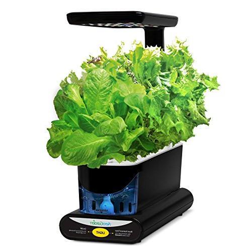 AeroGarden Sprout Herb Seed Black