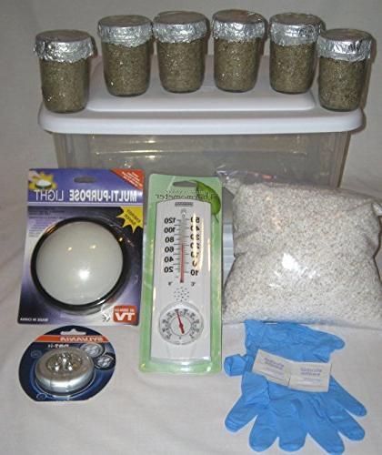 Maximumstore - Simple Mushroom Growing Kit - 6 Jars Grow Mus