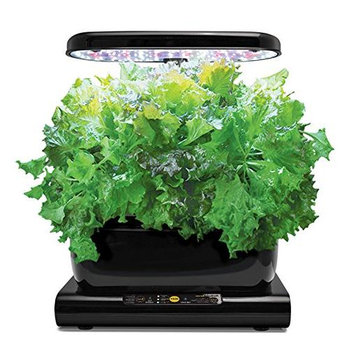 Miracle-Gro with Gourmet Herb Pod Kit, Black