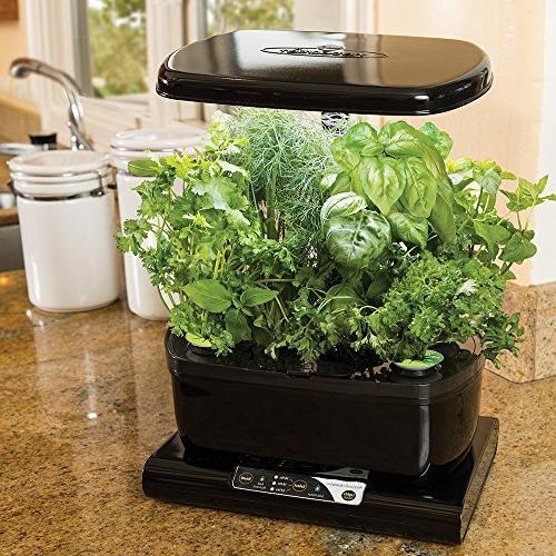 Miracle-Gro AeroGarden Gourmet Herb Kit,