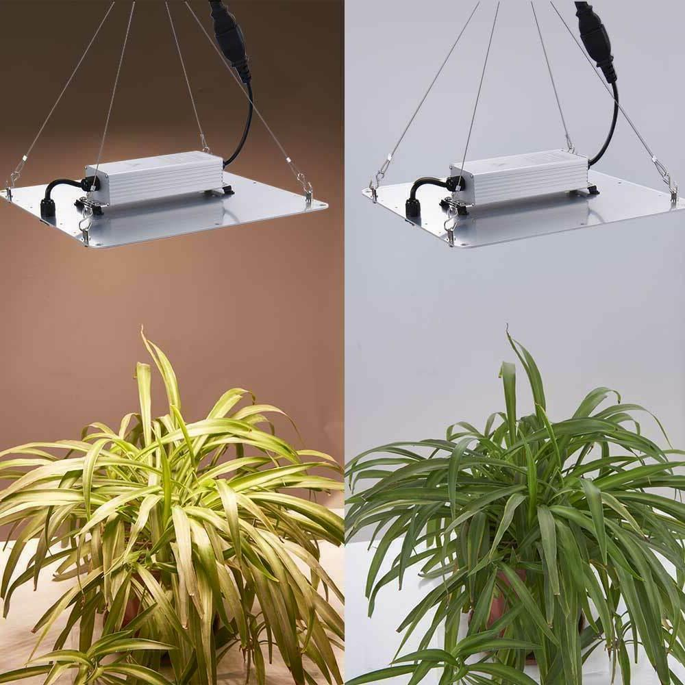 Full Spectrum Grow Plant Flower Hydroponic IP65