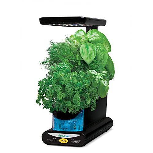 aerogarden sprout led with gourmet herb seed
