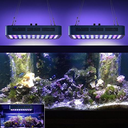 TOPLANET 165W Fish Tank Bulbs Full Night for Coral Reef LPS/SPS Freshwater Saltwater 55-75 Gallon Fish Tanks