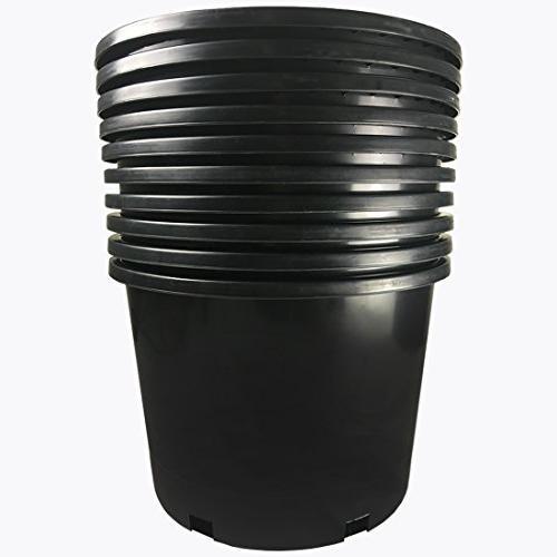 black plastic nursery plant container