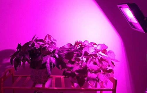 COB Ledy 20W Plant Lights for Greenhouse Seeds Seedlings Light Blue 4:1