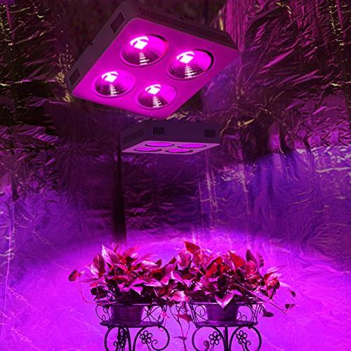 Roleadro LED Grow Light for Plants