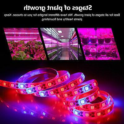 SMD LED Strip Grow Light Spectrum For / / Power