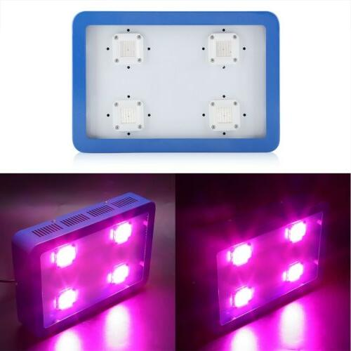 1200W LED Plant Grow Light Full Spectrum for Greenhouse Indo