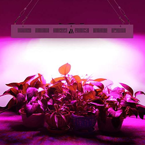 Dimgogo 2400w LED Grow Light Full Spectrum Greenhouse Hydroponic Plants and