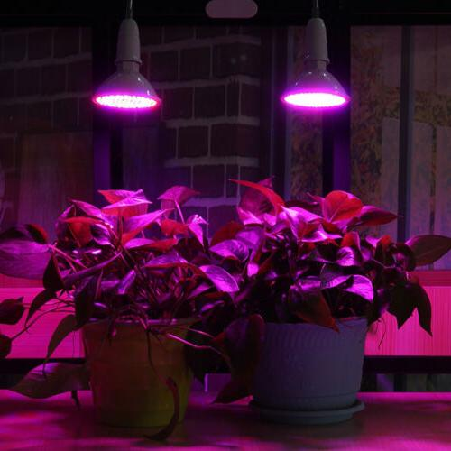 Dual 400 LED Plant Grow Light Bulb Desk Clip Holder Greenhouse Hydro