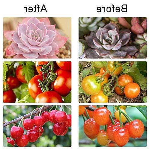 Dual Head Grow Light 18W 2 Levels Adjustable Degree Flexible Gooseneck for Indoor Plants Garden