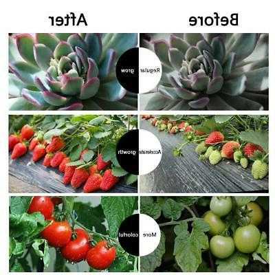 Dual Head Plant Light 40 for Plants