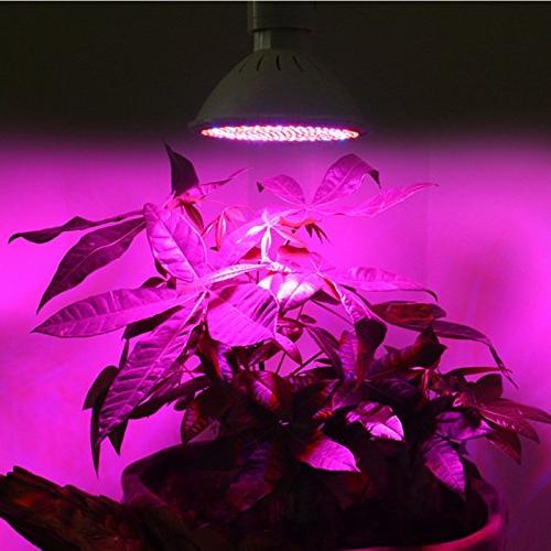 RONSHIN Red and LED Plant lights