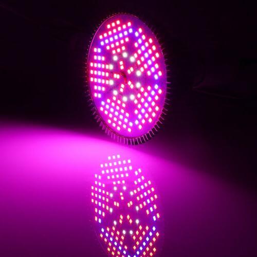 100W Grow Light Bulb Full for Flower Hydroponics