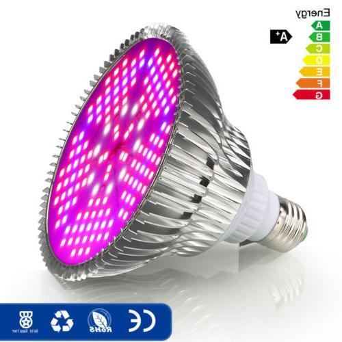 100W Light Bulb Full for Bloom Hydroponics