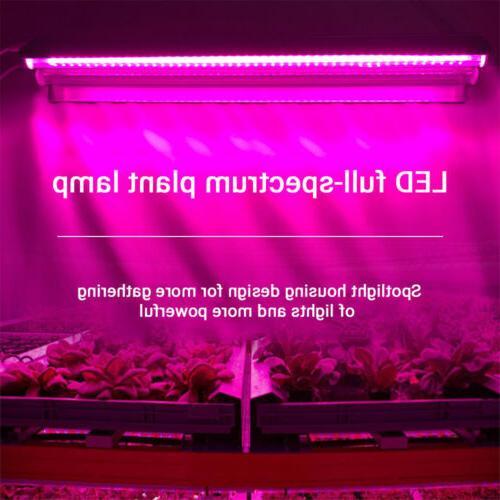 Full Light Lamp Integrated Fixture Stock