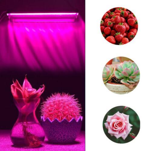 Full 96LED Light Plant Lamp Stock