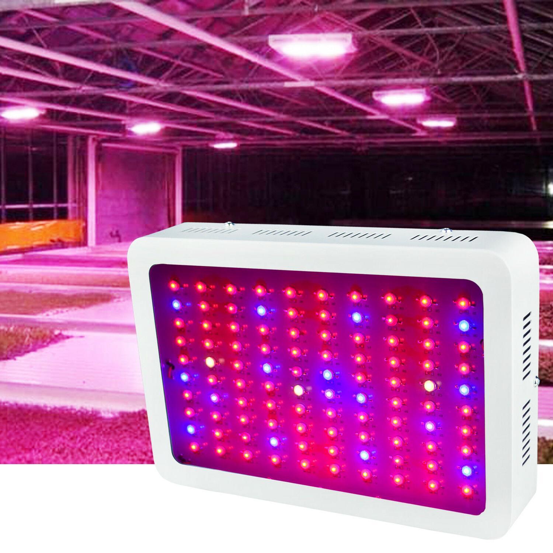 1000Watt LED Full Indoor Medical Plants flower Bloom