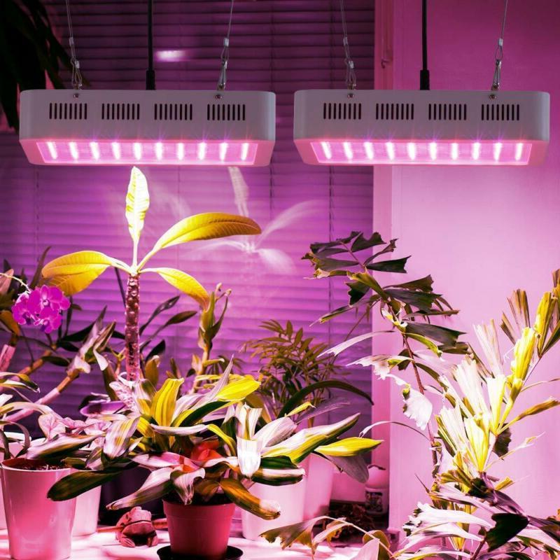 Roleadro 1000W LED Grow Spectrum Galaxyhydro Series Plant