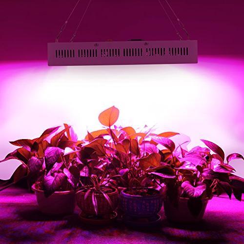 Dimgogo LED Spectrum Grow Greenhouse and Indoor