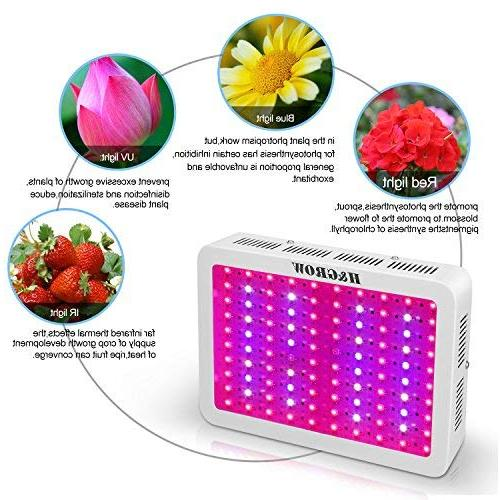 H&Grow Light Chips/Full Spectrum Grow Lamp with for Greenhouse Indoor Plants All Phases of Growth