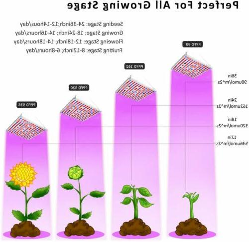 Grow Light Spectrum IR Plants