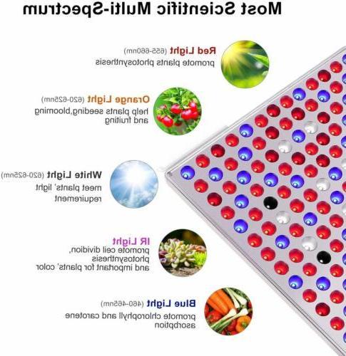 Grow Spectrum IR Bulbs for Plants