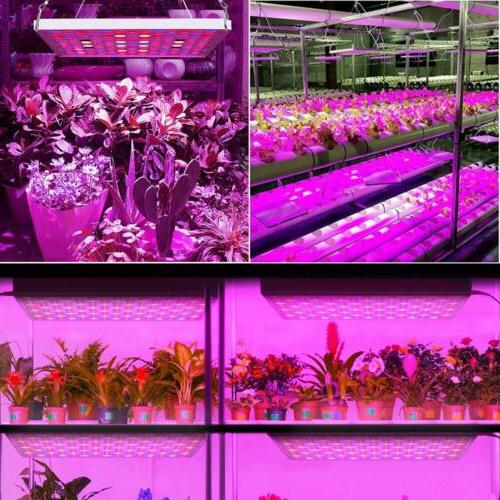 Grow Light 75W Spectrum IR Bulbs Indoor Plants