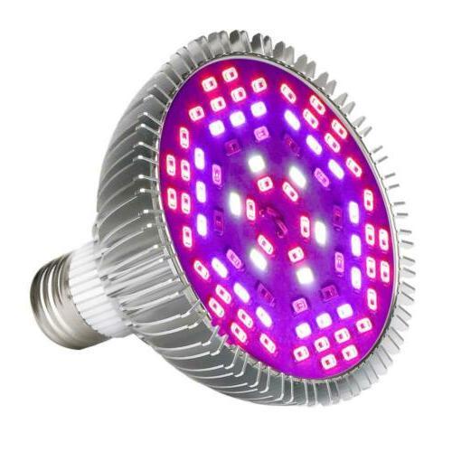 grow light bulb