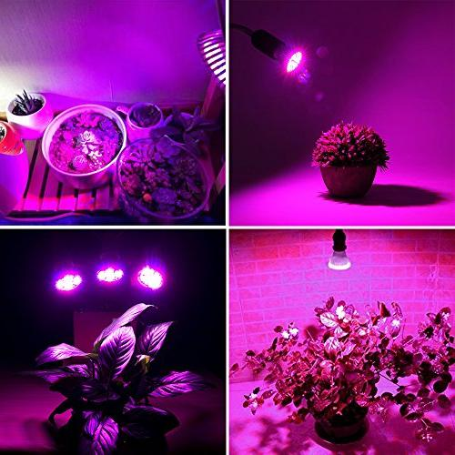 Lights E26 Grow Light Greenhouse Organic, for Tank, Plants,Pack of