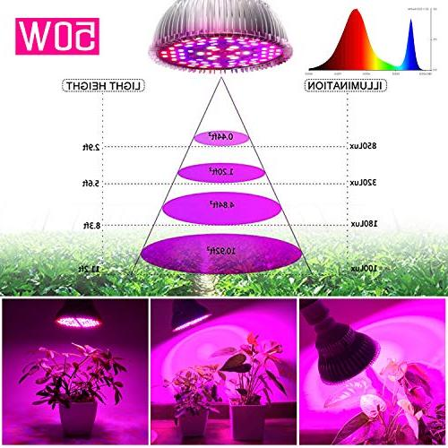 50W Bulb, Full for Indoor and Light Bulb for Indoor and Organic