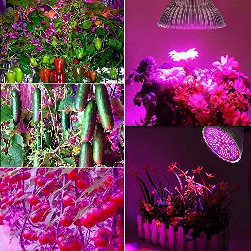 100W Light Bulb Light Bulb with for Socket,Grow Lamp Garden Flower