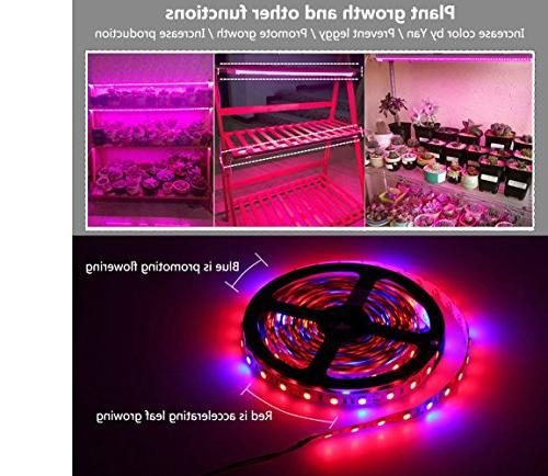 Jetloter Led Ledy ft Waterproof Flexible Soft Strip Flower Herbs Seeds Growing with Adaptor