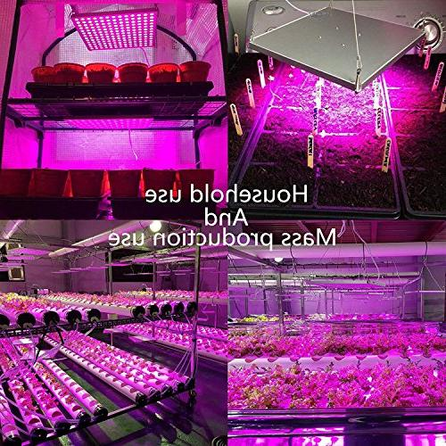 Lightimetunnel 45W Grow Light Growing Light Red Blue for Seedling Growing