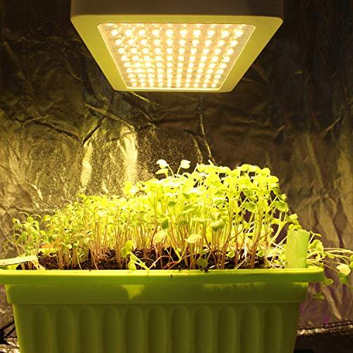 LIGHTIMETUNNEL 1000W Light Full Plant Plants Veg with Heatproof Casing