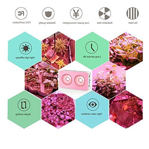 Roleadro Grow Light Full Spectrum Light for Flowering Veg