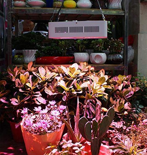 Roleadro Full Spectrum Light for Veg