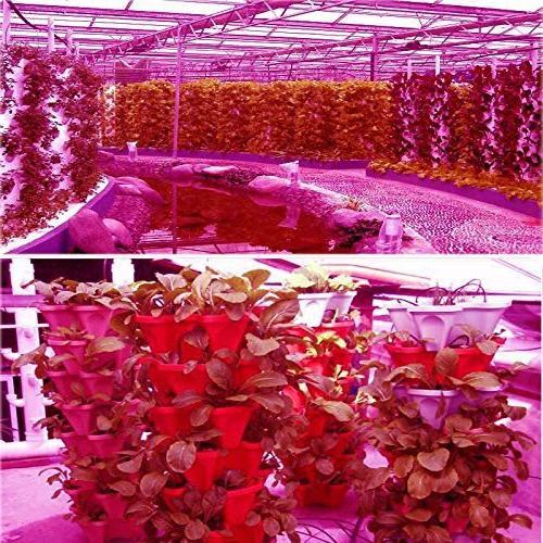 Morsen Led Light Full Lamp for Indoor Medical Veg Bloom