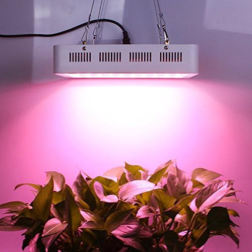 Roleadro LED Light 300W Spectrum Greenhouse Hydroponic Indoor Veg and
