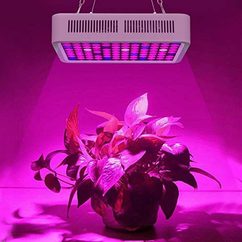 Roleadro Reflector-Series Red Full Lamp Hydroponic Indoor Plants and