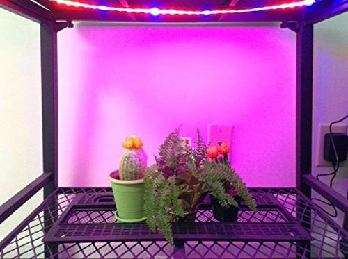 LED 3Pcs Light for Plants 18W Grow Plant Grow Indoor Hydroponic