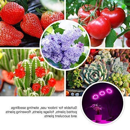 Grow Light, Lights for Indoor Castle Bulbs Timming Plant Lamp with Red, Blue Spectrum, 3/6/12H Divide 100 Levels