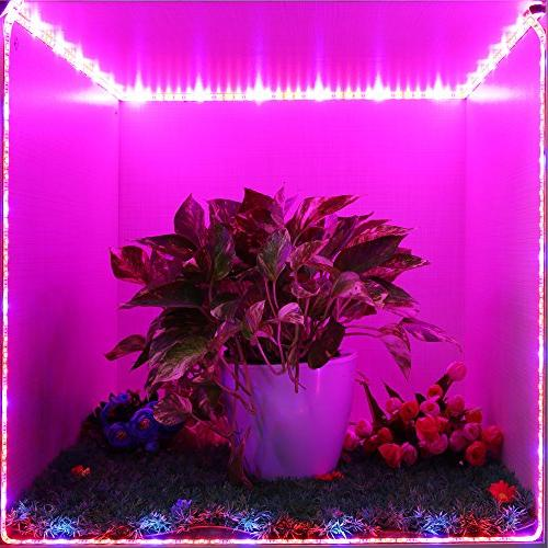 LED Grow Light, SOLMORE 3Pcs 1.6ft/Strip for Grow Lamp Plant for Indoor Plants,Plant Growing,Greenhouse,Potted Hydroponic