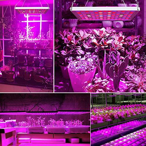 Led Grow Lights for Indoor Full Spectrum Plant Growing Light Lamp with IR Kit Hydroponic Plants Harvest
