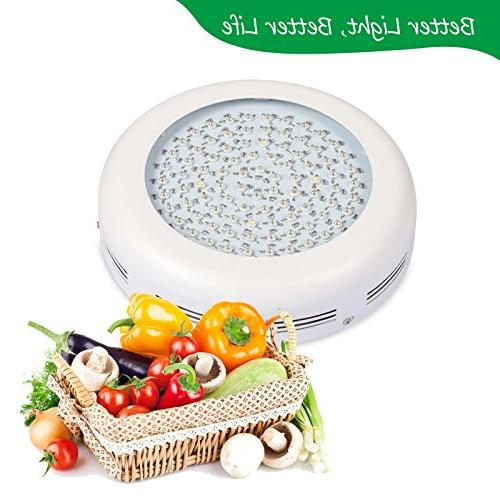 Roleadro Led Grow Light Plant with Spectrum, Light Germination, flower,