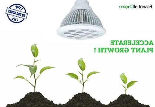 Essential Limited Supply: Industrial Grade Light Spectrum Light Bulb Luminosity & Power Consumption - Lights Greenhouse Growing